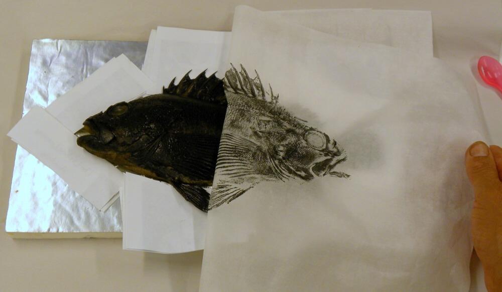 גיוטאקו, הדפסי דגים