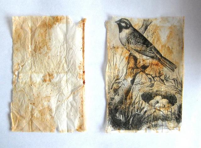 Art with tea bags