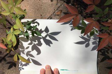 איך לצייר בעזרת הטבע